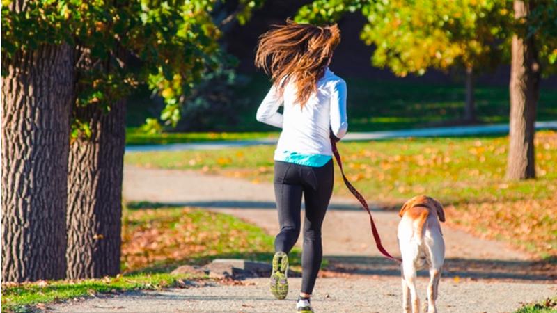 犬とジョギングする人の写真