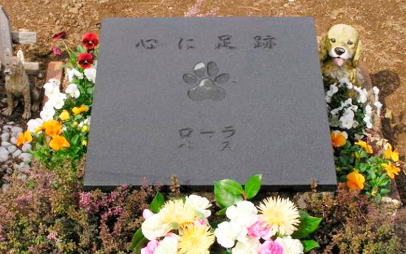 ペットのお墓の写真